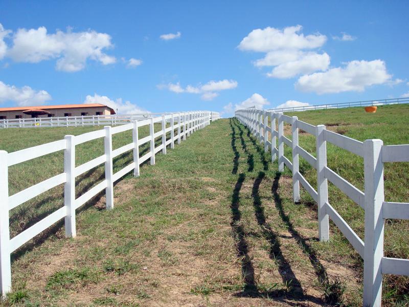 Corredor entre Piquetes para Haras, Fazendas, Sitios para Cavalos, Gados, Equinos ou Bovinos