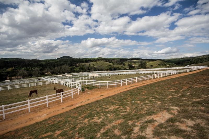 Cercas para Haras, Fazendas, Sitios para Cavalos, Gados, Equinos ou Bovinos